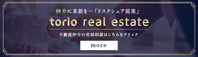 torio real estate
